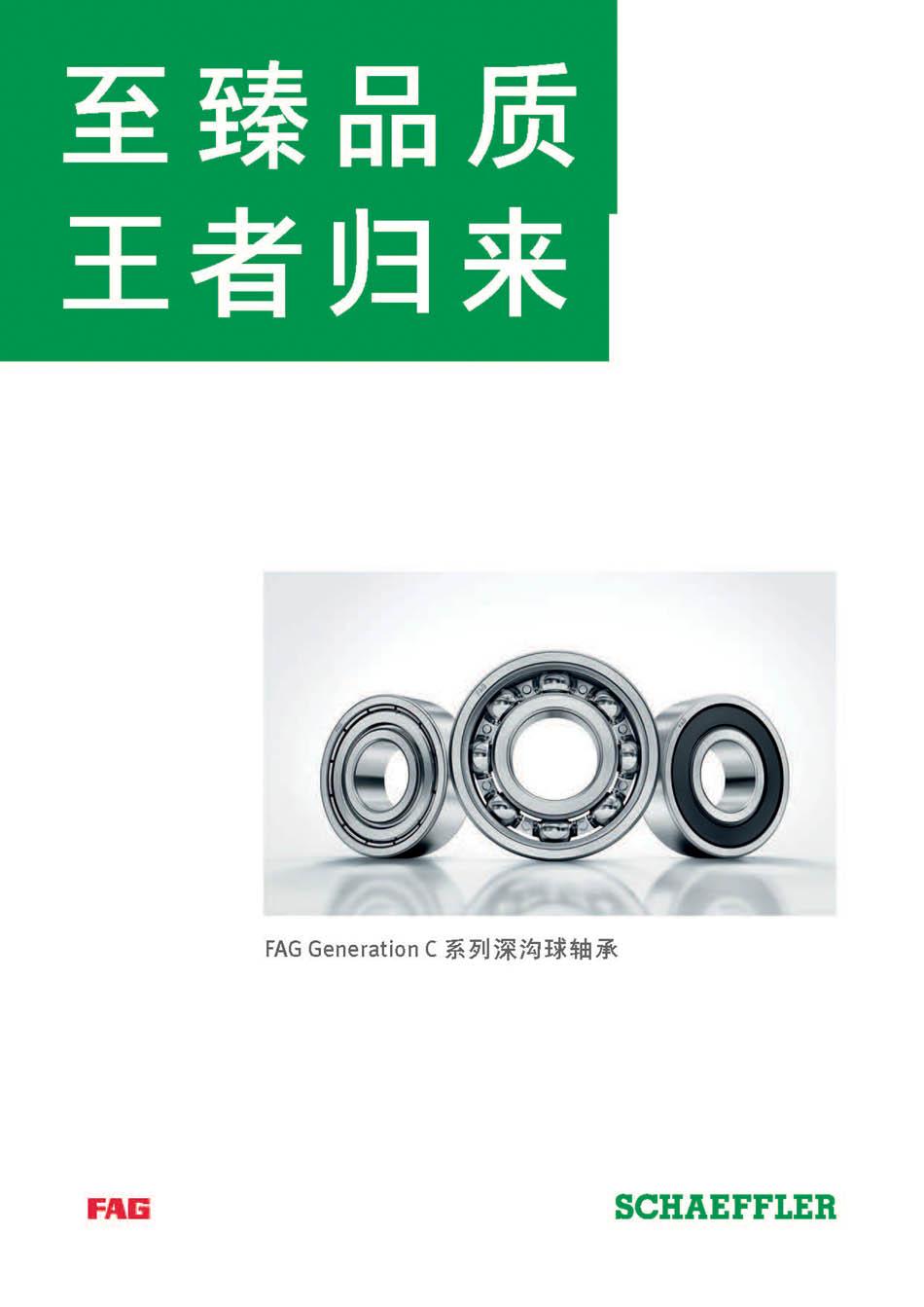 Brochure_GenerationC_CN_lowres4 (2)_页面_01.jpg