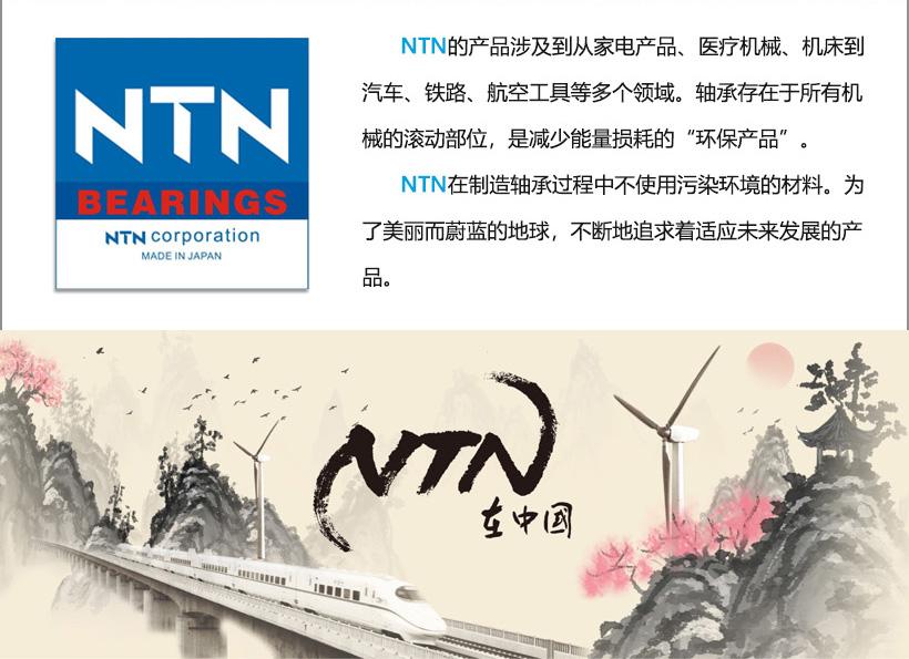 NTN03.jpg